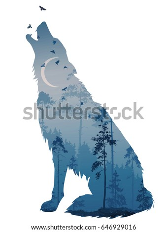 Silhouette of the howling wolf. Inside of it is a mysterious night forest with a moon and flying birds. Vector illustration, isolated object