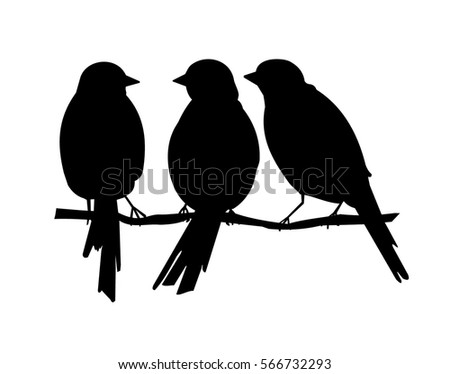 silhouette of  three birds