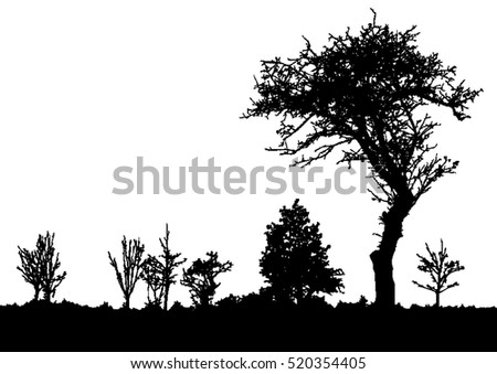 Shutterstock Silhouette of tree, bush with bare branches. Winter scenery trees afar landscape and black space for text, isolated vector
