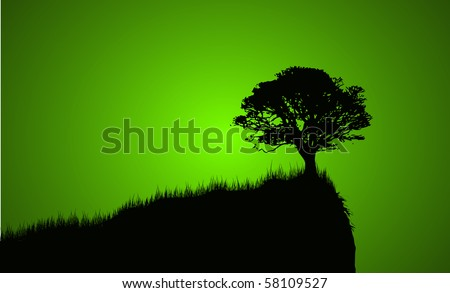 silhouette of tree on the edge