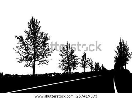 silhouette of tree with bare