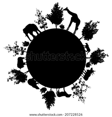 silhouette of  trees and wild