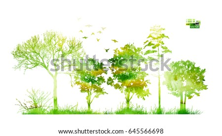 silhouette of trees in the