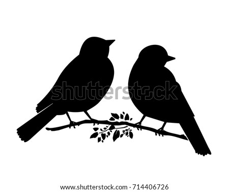 silhouette of  two birds