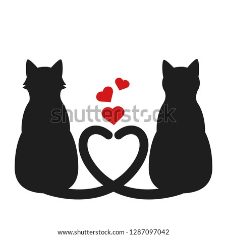 silhouette of two cats with