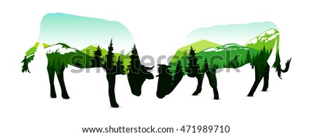silhouette of two cows with