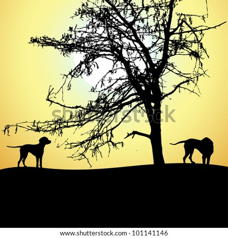 silhouette of two dogs at sunset, vector