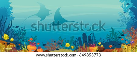 silhouette of two mantas  coral