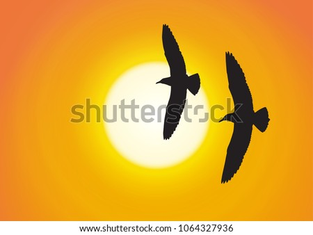 silhouette of two seagull