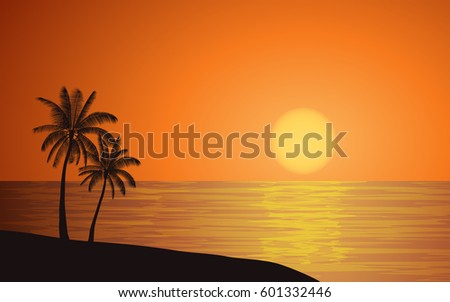 silhouette palm tree on beach