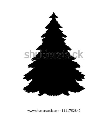 Silhouette spruce tree coniferous flora icon