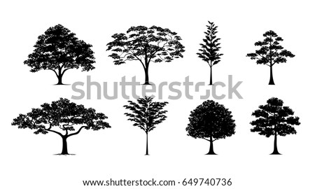 silhouette tree Vector in silhouettes set