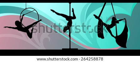 silhouettes of aerial hoop and