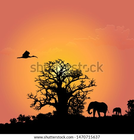 silhouettes of african