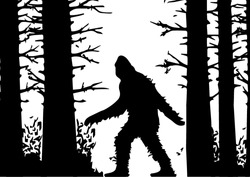 silhouettes of bigfoot. silhouette of the forest. wild nature