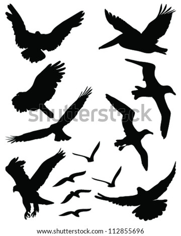 Silhouettes of birds in flight 2-vector