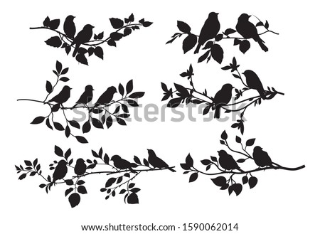 silhouettes of birds sit on