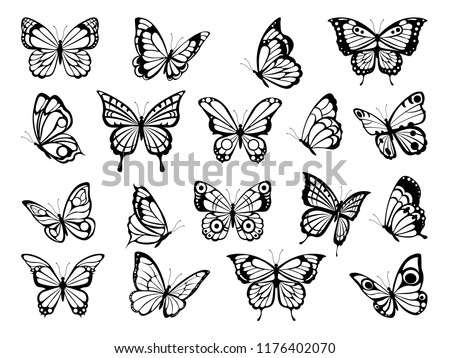 Silhouettes of butterflies. Black pictures of funny butterflies. Insect butterfly black silhouette, winged gorgeous animal, vector illustration