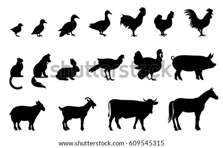 Silhouettes of domestic birds and animals. Vector illustration isolated on white background.
