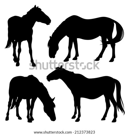 silhouettes of horses isolated