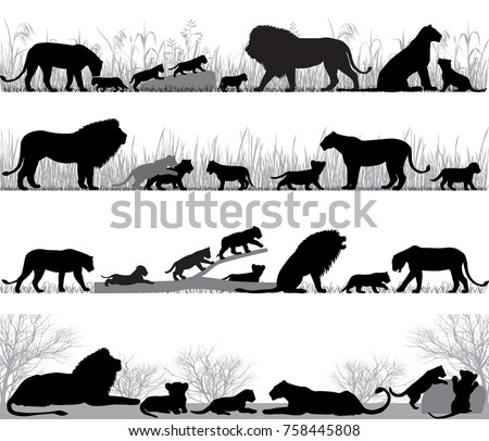 silhouettes of lions and lion