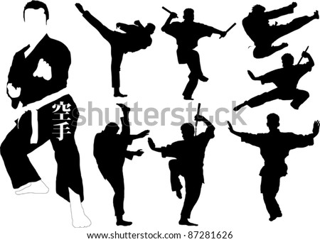 silhouettes of martial arts