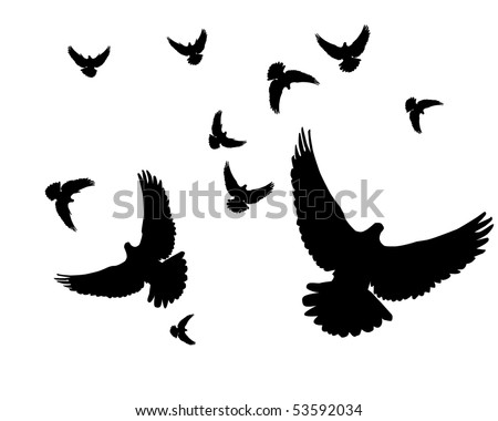 Silhouettes of pigeons on a white background