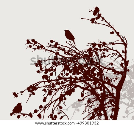 silhouettes of the birds on the