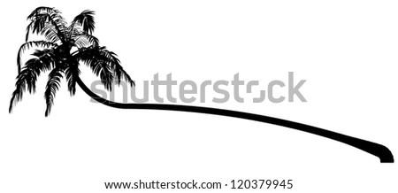 silhouettes of the coconut trees - stock vector