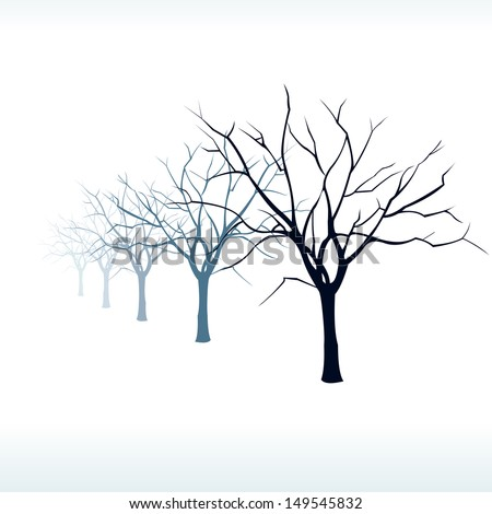 silhouettes of trees in the