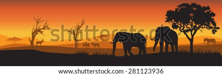 silhouettes of wild african