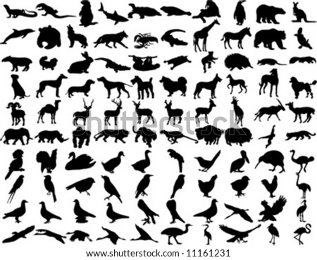 silhouettes of animals. stock vector : silhouettes wild animals 3