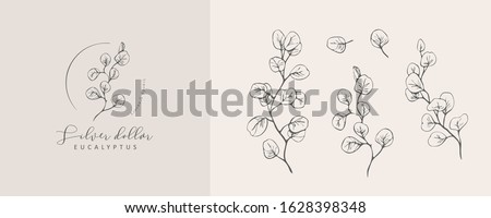 Silver Dollar eucalyptus logo and branch. Hand drawn wedding herb, plant and monogram with elegant leaves for invitation save the date card design. Botanical rustic trendy greenery vector illustration