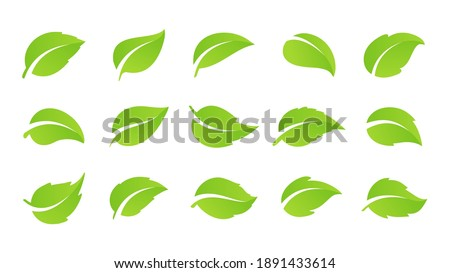 Simple flat green leaf design vector The concept of forest preservation by using natural products