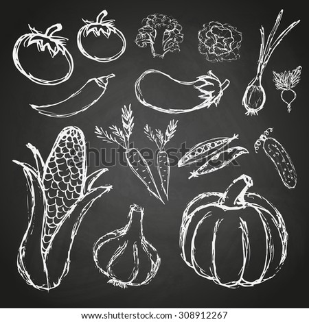 simple hand drawn doodle vegetables on black board eps10