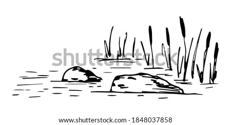Simple hand-drawn vector drawing in black outline. Lake shore, reeds, stones in the water, bumps, swamp. Nature, landscape, duck hunting. Foto stock ©