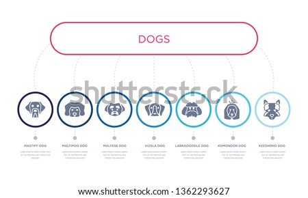 simple illustration set of 7 vector blue icons such as keeshond dog, komondor dog, labradoodle dog, maltese maltipoo mastiff infographic design with 7 icons pack