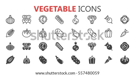 Simple modern set of vegetable icons. Premium symbol collection. Vector illustration. Simple pictogram pack.
