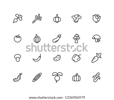 Simple Set of Vegetables Vector Line Icons. Contains such Icons as carrot, pepper, corn and more. Editable vector stroke. 48x48 Pixel Perfect. #1336906979
