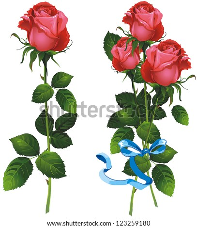 Single beautiful Red rose isolated on white background and bouquet of red roses. Vector illustration.