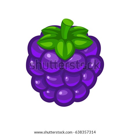 Single blackberry berry with green leafs vector icon isolated on white background for food art and illustration