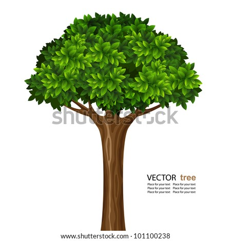 Single brightly green tree isolated on white background