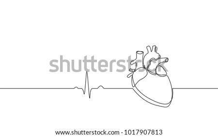 Single continuous line art anatomical human heart silhouette. Healthy medicine concept design one sketch outline drawing vector illustration