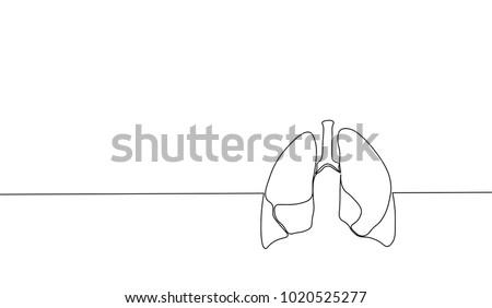 single continuous line art