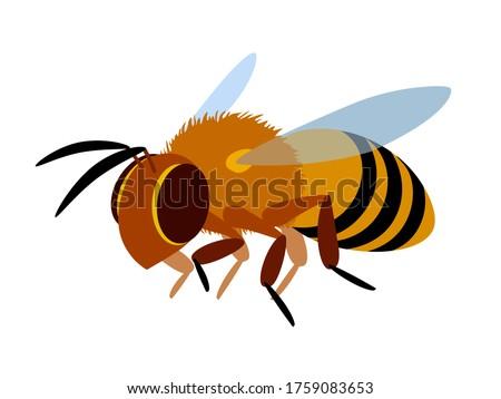 single flying yellow worker