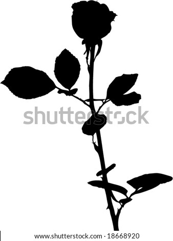 rose flower sketch. rose flower silhouette