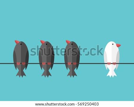 single white unique bird