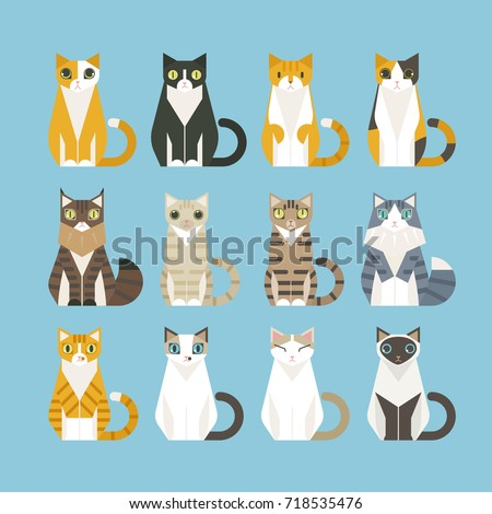 sitting cats of various
