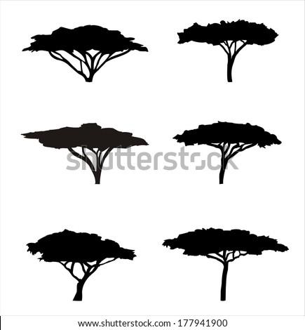 Six acacia silhouettes
