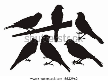 Six canary bird silhouettes.